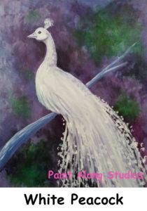 silverwhite_peacock